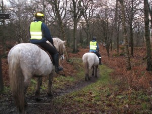 Hacking in Plean Country Park