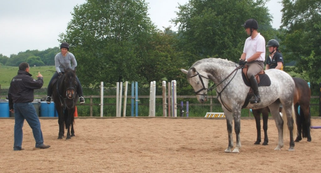 horse riding lessons and training